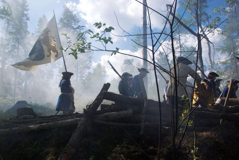 Karoliner i skogen